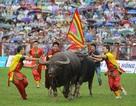 Thanh tra Bộ Văn hoá sẽ kiểm tra công tác lễ hội tại 18 tỉnh, thành phố