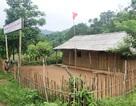 Quảng Trị: Tập trung nguồn lực xóa phòng học tạm, phòng học mượn