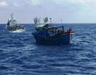 Cứu hộ an toàn 11 thuyền viên trên tàu hàng gặp nạn