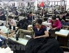 Đồng Nai: Thưởng Tết Nguyên đán Kỷ Hợi cao nhất là 545 triệu đồng