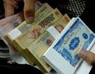 Tết Kỷ Hợi 2019: Không in tiền mới mệnh giá 10.000 đồng