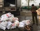 Xe tải chở gần 1 tấn chân trâu bò hôi thối đi TP. Hồ Chí Minh tiêu thụ