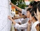 HV Chính sách và Phát triển công bố 3 phương thức xét tuyển trong năm 2019