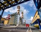 PV Power lọt TOP 10 nhãn hiệu hàng đầu Việt Nam