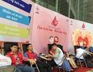 Hơn 1 vạn nhân viên ngành điện tham gia hiến máu cứu người