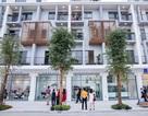 """""""Cơ hội vàng"""" đầu tư biệt thự, shophouse Tây Nam Hà Nội"""