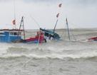 Tàu Trung Quốc từ chối cứu hộ tàu cá Việt Nam gặp sự cố ở Hoàng Sa