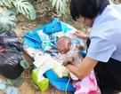 Trung Quốc: Tìm thấy em bé bên vệ đường đang khóc vì bị cả bầy kiến cắn