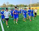 CLB Hà Nội di chuyển gần 1 ngày về nước, HLV Park Hang Seo sốt ruột