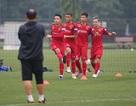 Đội tuyển Việt Nam đấu Malaysia: Chờ những toan tính bất ngờ từ thầy Park