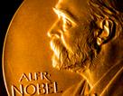 """Nobel Văn học trao giải """"kép"""" với giá trị lên tới 42 tỷ đồng"""