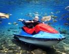 Ảnh chụp dưới nước độc đáo khiến khách nườm nượp kéo đến lặn ao làng ở Indonesia