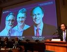 Ba nhà khoa học chia nhau giải Nobel Y học