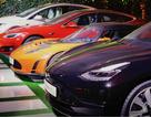 Người Trung Quốc mê mẩn xe Tesla
