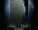 """Đặt trước iPhone 11/ 11 Pro/11 Pro Max """"lãi"""" ngay hơn 3,6 triệu đồng"""