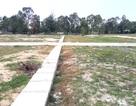 Biến đất nông nghiệp thành dự án phân lô...
