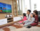 Truyền hình FPT ra mắt ứng dụng di động Foxy xem truyền hình mọi lúc mọi nơi