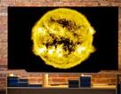 TV LG OLED C9 đứng đầu bảng chấm điểm chất lượng của Rtings