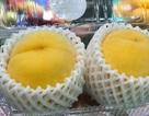 Dân Việt sành ăn: Từ đào Nhật, kem Đài cho đến bào ngư Úc, tiền triệu vẫn cháy hàng