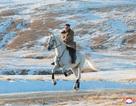 Ông Kim Jong-un cưỡi bạch mã lên đỉnh núi thiêng