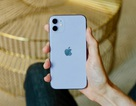 """iPhone 11 khóa mạng Mỹ gây """"sốt"""" ở Việt Nam, giá hơn 13 triệu đồng"""