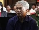 Nguyên giám đốc Agribank chi nhánh 7 lãnh án 30 năm tù