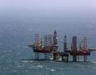 PVN tăng cường, đẩy mạnh lĩnh vực dịch vụ dầu khí