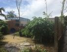 Vụ TAND huyện Mỏ Cày Nam vi phạm tố tụng: Tạm dừng xét xử để làm rõ thêm chứng cứ