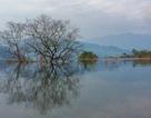 Việt Nam có thêm 4 danh hiệu Vườn Di sản ASEAN
