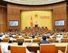Đại biểu Quốc hội chỉ có một quốc tịch để đảm bảo là công dân Việt Nam