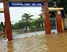Bình Định: Học sinh toàn tỉnh nghỉ học để tránh bão số 5