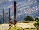 Nhìn lại kết quả thực hiện Nghị Quyết Quốc hội khóa X về tiếp nhận lưới điện hạ áp nông thôn