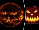 Khoảnh khắc mặt trời sẵn sàng… đi dự hội hóa trang Halloween