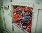 Cảnh tượng chen chúc gây sốc bên trong nhà tù giam giữ phiến quân IS
