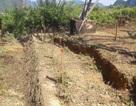 Sụt lún bất thường sát chân cột điện 500kV nghi do dư chấn địa chất