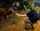 Xách balo đi nửa vòng trái đất để tặng một con bò cho cậu bé mồ côi