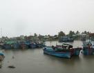Ninh Thuận: Cảnh báo áp thấp đang xuất hiện và đề phòng lũ quét