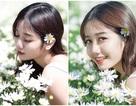 """""""Thiên thần ảnh thẻ"""" Lào Cai tinh khôi bên hoa cúc họa mi đầu mùa"""