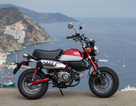 Phụ kiện bị lỗi, Honda phải triệu hồi xe máy