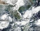 Bão số 6 diễn biến phức tạp vì phụ thuộc vào siêu bão Hạ Long