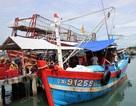3 tàu cá Quảng Nam xin vào Philippines trú bão