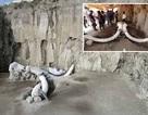 Tìm thấy hố bẫy voi ma mút của người cổ đại