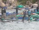Khánh Hòa cưỡng chế dân trên lồng bè vào bờ trước khi bão đổ bộ