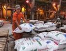 Chiến tranh thương mại Mỹ - Trung Quốc: Nhiều doanh nghiệp Việt lao đao