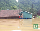 Khởi công xây dựng 58 nhà bè vượt lũ cho người nghèo vùng rốn lũ