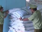 Phú Yên: Tiếp tục tạm giữ 4,5 tấn đường không rõ nguồn gốc