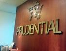 Truy trách nhiệm Prudential trong vụ siêu lừa đảo tại Quảng Ninh