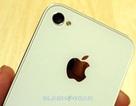"""Sẽ có cuộc """"đào tẩu"""" trước cơn sốt iPhone 5"""