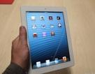"""iPad thế hệ 3 bị """"khai tử"""" chóng vánh"""