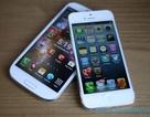 Samsung đòi cấm bán iPhone 5 tại Mỹ